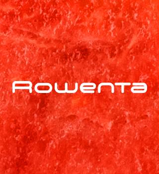 -20 % la Rowenta